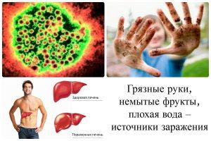 Гепатит a в с кратко