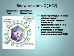 Гепатит симптомы по генотипу