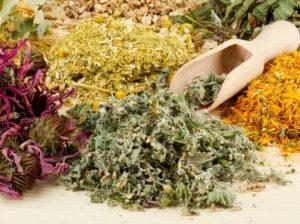 Какая трава помогает при панкреатите
