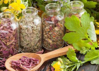 Целебные травы при панкреатите